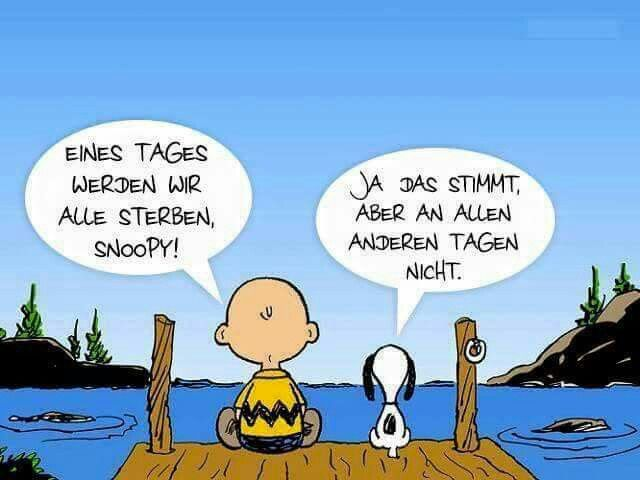 Image Result For Gute Song Zitate