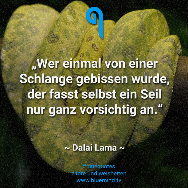 Zitate Von Dalai Lama Choice Image Zitate Leben Genieen