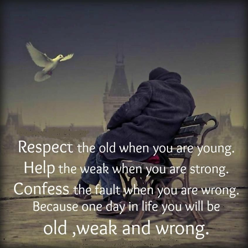 Quotes About Respecting Your Parents Quotes Quotes Like
