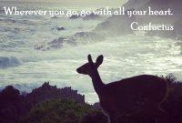 Zitat Von Confucius