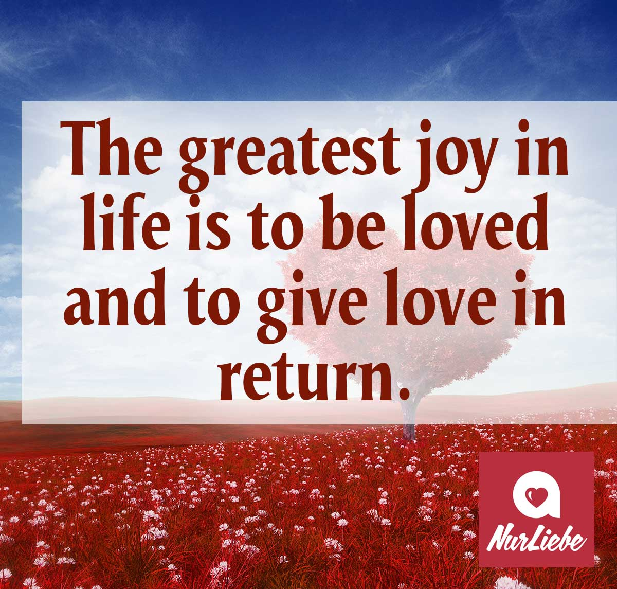 Liebesspruch Auf Englisch The Greatest Joy In Life Is To Be Loved And To Give Love