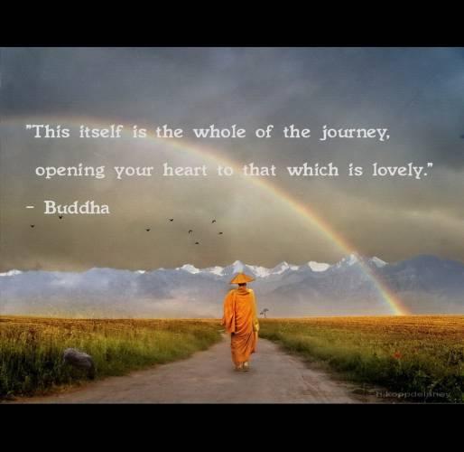 Viele Beruhmte Zitate Stammen Von Buddha