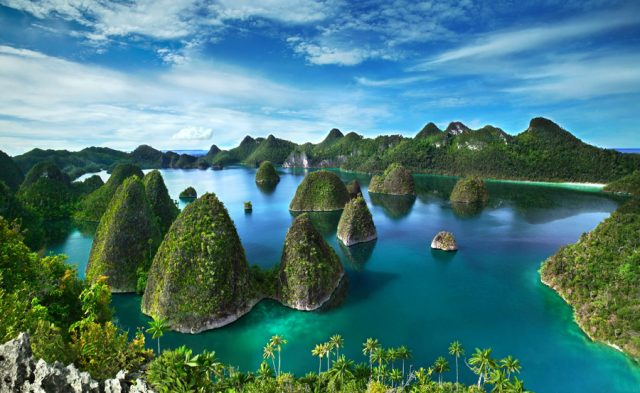 Diving and Enjoying The Beauty of Raja Ampat in Papua