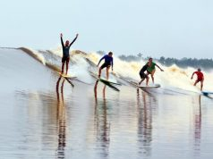 Surf on the Kampar River