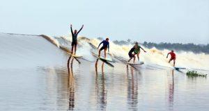 Surf on the Kampar River