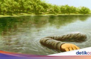Pria Paruh Baya Ditemukan Tewas Penuh Luka di Aliran Sungai Jambi